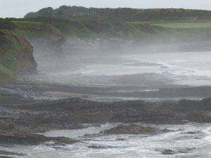 Coast near Howick and Craster