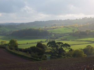 The Teme Valley