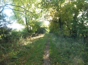 Bridleway from Inkberrow